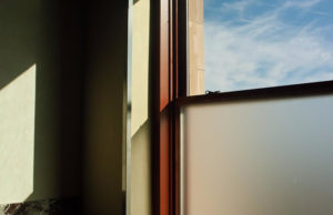 Still Life - Sandro Tedde Photography